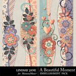 A Beautiful Moment Borders Pack-$1.40 (Lindsay Jane)