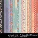 A Beautiful Moment Paper Pack-$1.75 (Lindsay Jane)