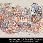 A Beautiful Moment Embellishment Pack-$2.45 (Lindsay Jane)