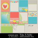 Take A Selfie Journal Cards Pack-$1.99 (Lindsay Jane)