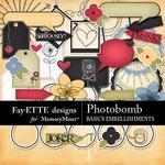Photobomb Basics Embellishment Pack-$3.49 (Fayette Designs)