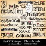 Photobomb WordArt Pack-$1.99 (Fayette Designs)
