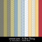 A Boy Thing Pattern Paper Pack-$1.99 (Lindsay Jane)