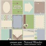 Natural Wonder Journal Cards-$1.99 (Lindsay Jane)