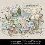 Natural Wonder Embellishment Pack-$3.49 (Lindsay Jane)