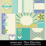 New Direction Journal Cards Pack-$1.99 (Lindsay Jane)