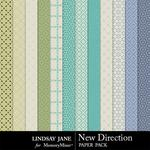 New Direction Patterned Paper Pack-$1.99 (Lindsay Jane)