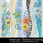 Summer is Coming Borders Pack-$1.99 (Lindsay Jane)