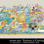 Summer is Coming Embellishment Pack-$3.49 (Lindsay Jane)