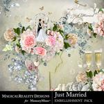 Just Married Embellishment Pack-$4.50 (MagicalReality Designs)