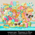 Summer is Here Embellishment Pack-$3.49 (Lindsay Jane)