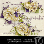 Your Story Cluster Pack-$1.99 (Indigo Designs)