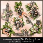 No Ordinary Love Clusters Pack 2-$2.99 (Jumpstart Designs)