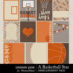 A Basketball Star Journal Cards-$1.99 (Lindsay Jane)