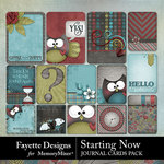 Starting Now Journal Cards Pack-$3.99 (Fayette Designs)