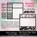 He Said She Said Big Words Pack-$1.99 (Fayette Designs)