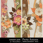 Pretty Autumn Borders Pack-$1.99 (Lindsay Jane)