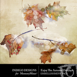 Enjoy the Autumn Overlay Pack-$2.99 (Indigo Designs)