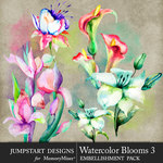 Watercolor Blooms 3-$4.99 (Jumpstart Designs)