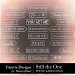 Still the One Photo Labels Pack-$2.99 (Fayette Designs)