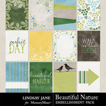 Beautiful Nature Journal Cards Pack-$1.99 (Lindsay Jane)
