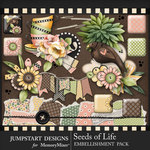 Seeds of Life Clusters and Pretties Pack-$3.99 (Jumpstart Designs)