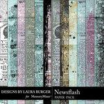 Newsflash Newsprint Paper Pack-$2.80 (Laura Burger)