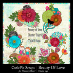 Beauty Of Love Cluster Pack-$2.99 (CutiePie Scraps)