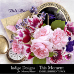 This Moment Embellishment Pack-$4.99 (Indigo Designs)