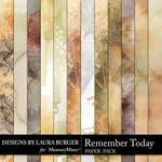 Remember Today Grunge Paper Pack-$2.45 (Laura Burger)