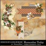 Remember Today Clusters Pack-$4.99 (Laura Burger)