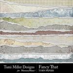 Fancy That Torn Paper Pack-$3.99 (Tami Miller)