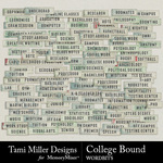 College Bound Wordbits Pack-$2.99 (Tami Miller)
