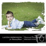 MM Specialty Font Distressed Photo 1-$2.00 (Lasting Impressions)