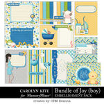 Bundle of Joy Boy Pocket Cards Pack-$3.99 (Carolyn Kite)