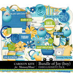 Bundle of Joy Boy Embellishment Pack-$4.99 (Carolyn Kite)