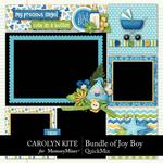 Bundle of Joy Boy QuickMix-$5.99 (Carolyn Kite)