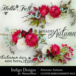 Awesome Autumn Cluster Pack-$3.49 (Indigo Designs)