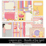 Bundle of Joy Girl Pocket Cards Pack-$3.99 (Carolyn Kite)