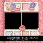 Bundle of Joy Girl QuickMix-$5.99 (Carolyn Kite)