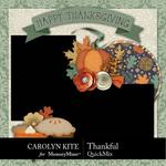 Thankful CK QuickMix-$3.99 (Carolyn Kite)
