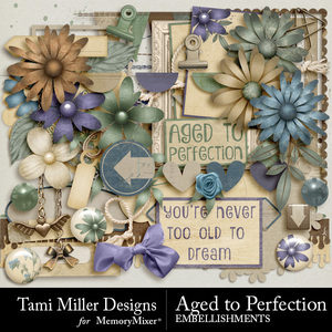 Aged to perfection embellishments pack medium
