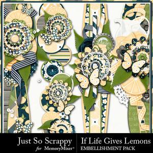 Life lemons borders medium