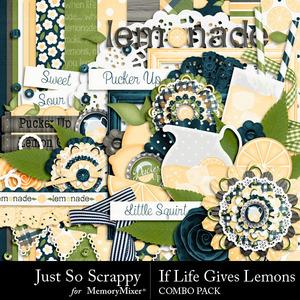 Life lemons kit medium