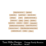 Vintage Family Reunion Wordbits-$2.99 (Tami Miller)