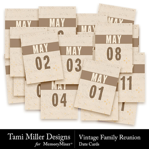 Vintage family reunion cards medium