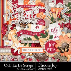 Choose joy kit medium