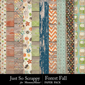Forest fall worn wood papers medium