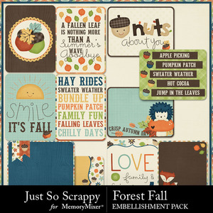 Forest fall pocket scrap cards medium