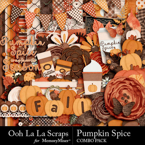 Pumpkin spice kit medium